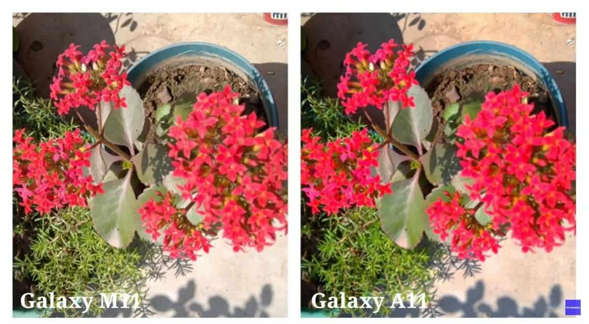samsung galaxy a11 perbandingan kamera (2)