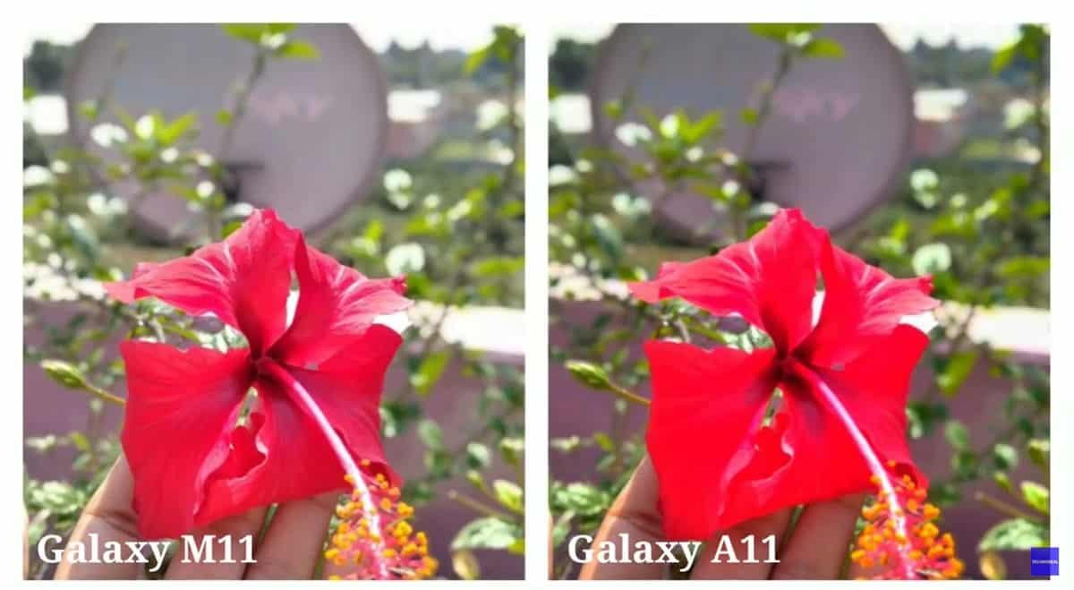 samsung galaxy a11 perbandingan kamera (3)